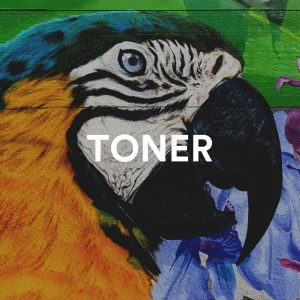"""Parrot mural with text """"TONER"""""""